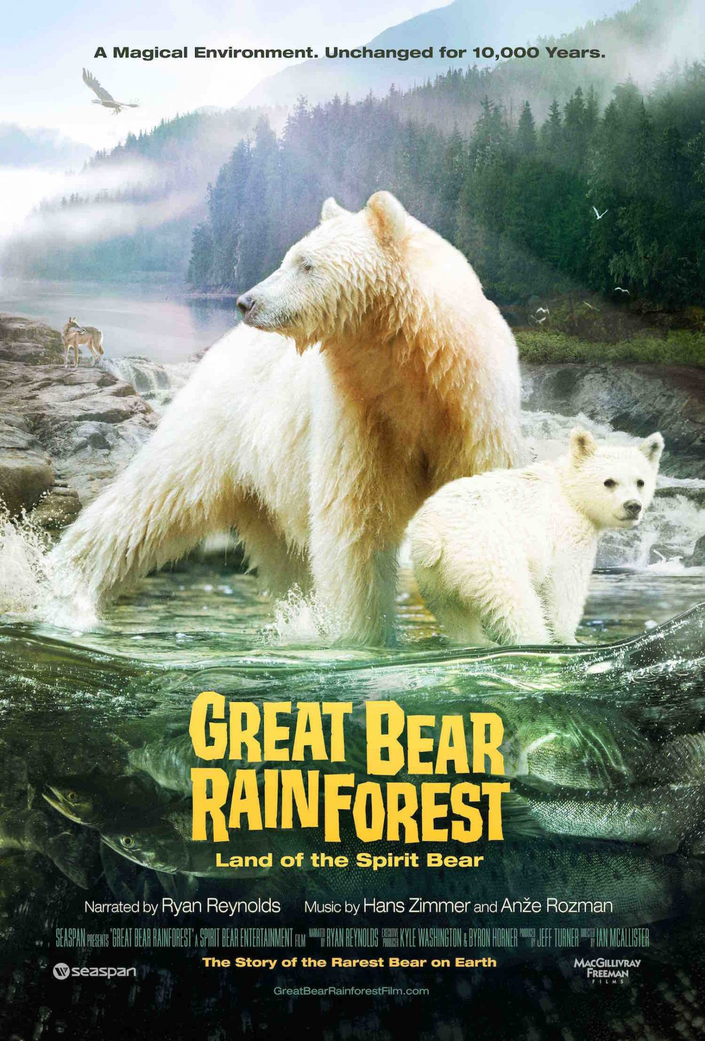 Destination BC-sponsored Great Bear Rainforest IMAX® film wins Cinematography Award