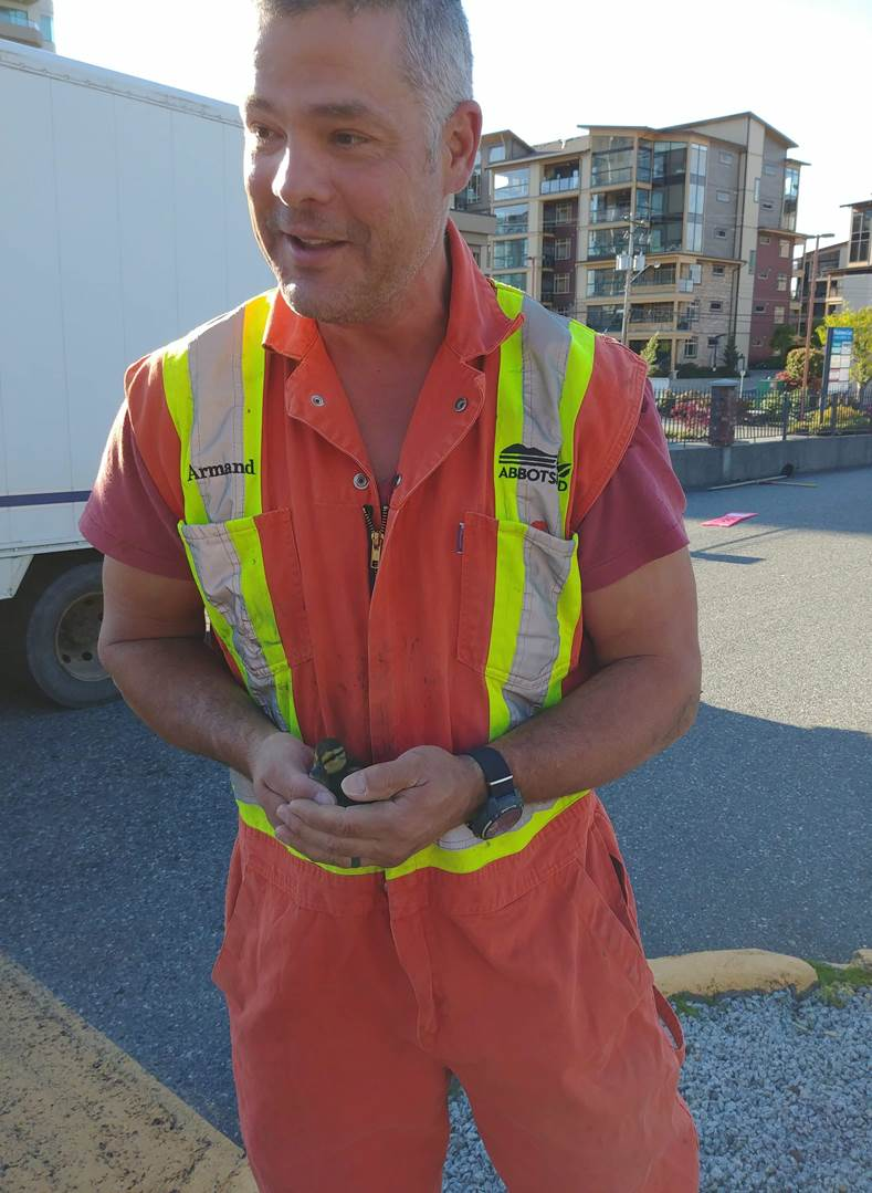 "City Worker Saves Baby Ducks During ""Daring"" Rescue Attempt"