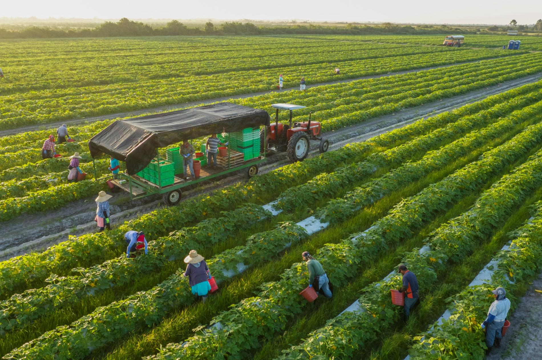 Government of Canada invests $4.9 million to further protect British Columbia farm workers during COVID-19